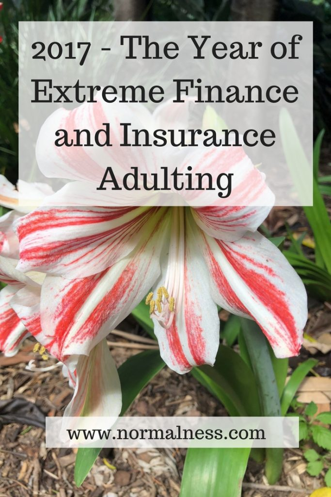 2017 - The Year of Extreme Finance and Insurance Adulting