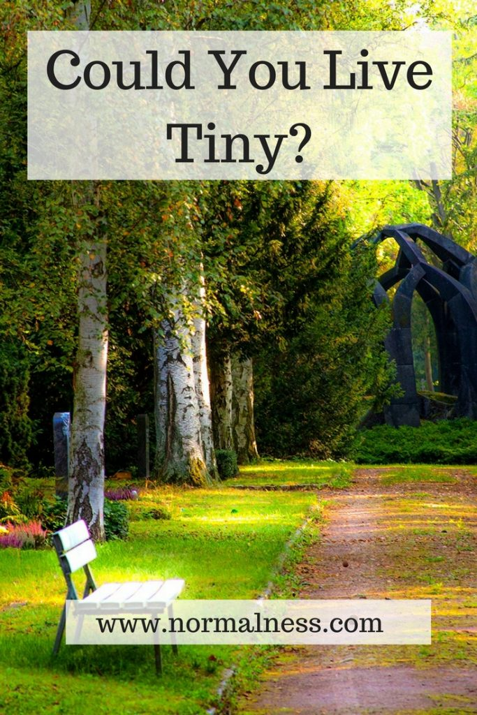 Could You Live Tiny?