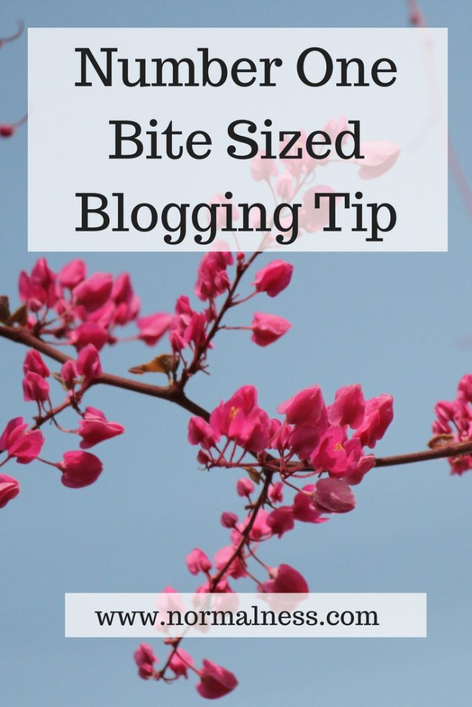 Number One Bite Sized Blogging Tip