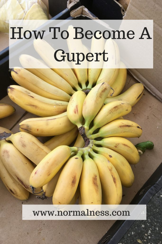 How To Become A Gupert