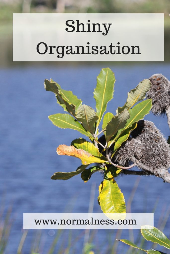 Shiny Organisation