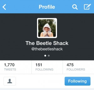 Numbers Don't Count: The Beetle Shack Twitter