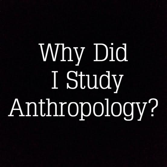Why Did I Study Anthropology?